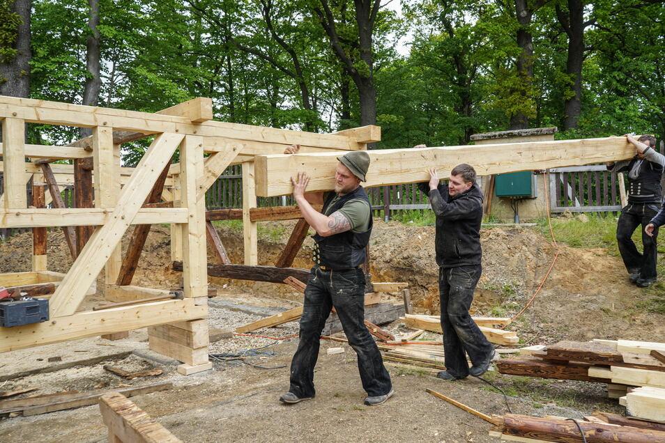 Zimmerleute der Tischlerei Fricke aus Thalheim im Erzgebirge bauen derzeit das historische Scharfrichterhaus aus Lissahora an der Lugaer Bockwindmühle neu auf.