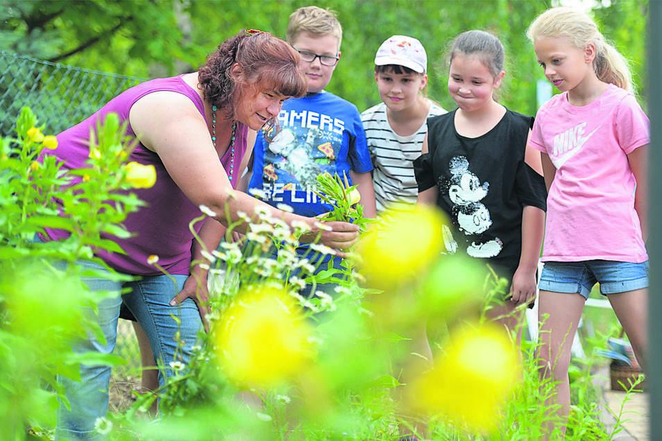 Blüten überall. Anita Bätz (l.) bei der Einweihung der Schmetterlingswiese an der Grundschule in Radeburg im Juni 2018.