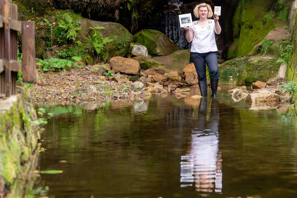 Elisabeth König, Gastwirtin vom Lichtenhainer Wasserfall hat wieder eine Idee - dieses Mal für den Wiederaufbau der zerstörten Stauanlage.