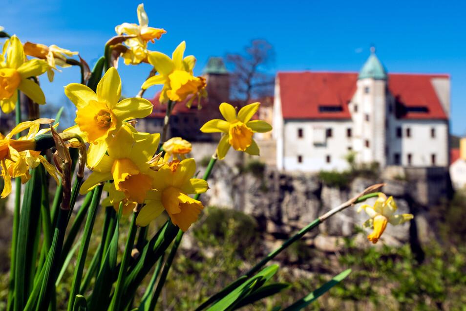 Wegen Corona geschlossen. Trotzdem wird die Zukunft von Burg Hohnstein intensiv geplant.