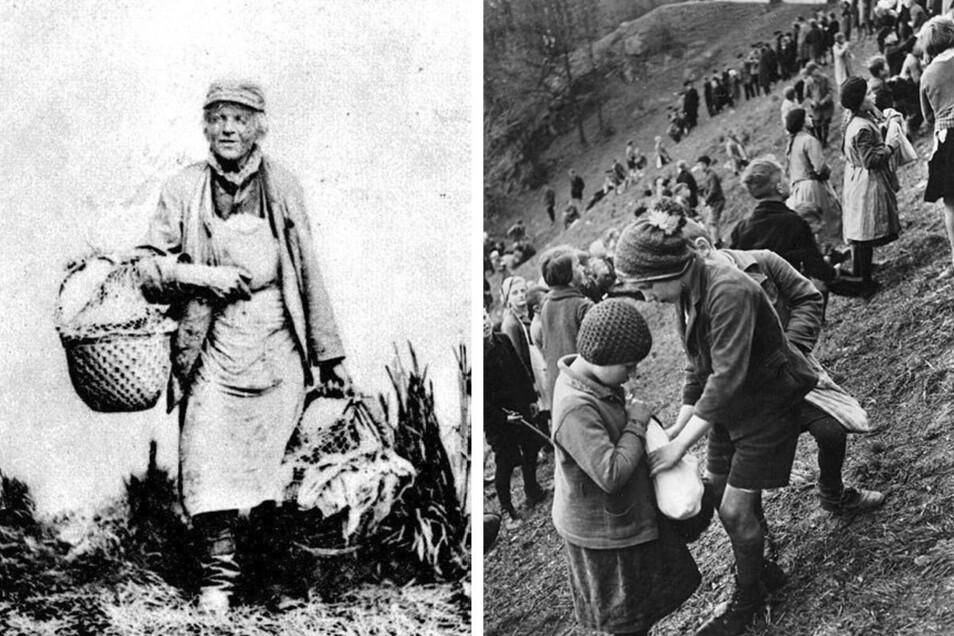 Der Eierjokel (links) - ein Bautzener Original auf einer Fotografie von 1900, rechts: reiche Beute beim Eierschieben.