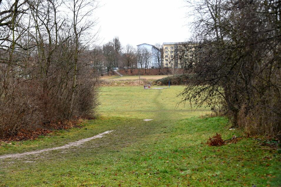 An dieser Stelle soll die Interimsstraße vom Toeplerpark, der sich links befindet, hinüber nach Laubegast führen.