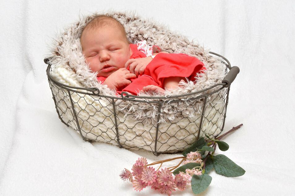 Emma Elisabeth, geboren am 6. Juni, Geburtsort: Freital, Gewicht: 3.600 Gramm, Größe: 52 Zentimeter, Eltern: Martina Schmiedgen und Uwe Friedrich, Wohnort: Grumbach