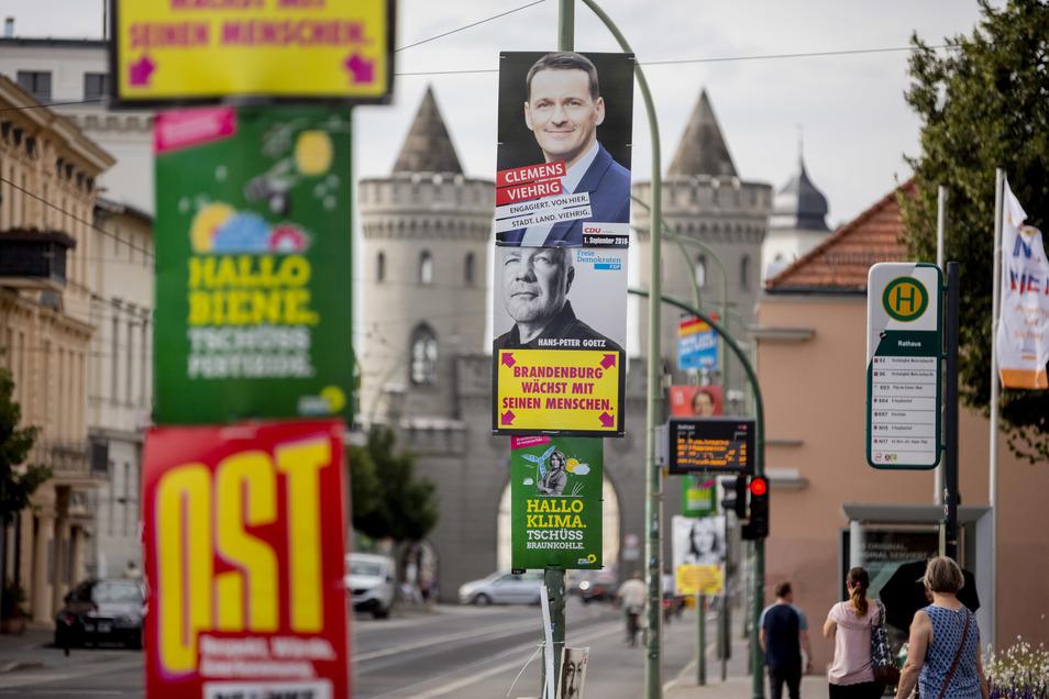 Wahlplakate zur Landtagswahl in Brandenburg hängen vor dem Nauener Tor in Potsdam.