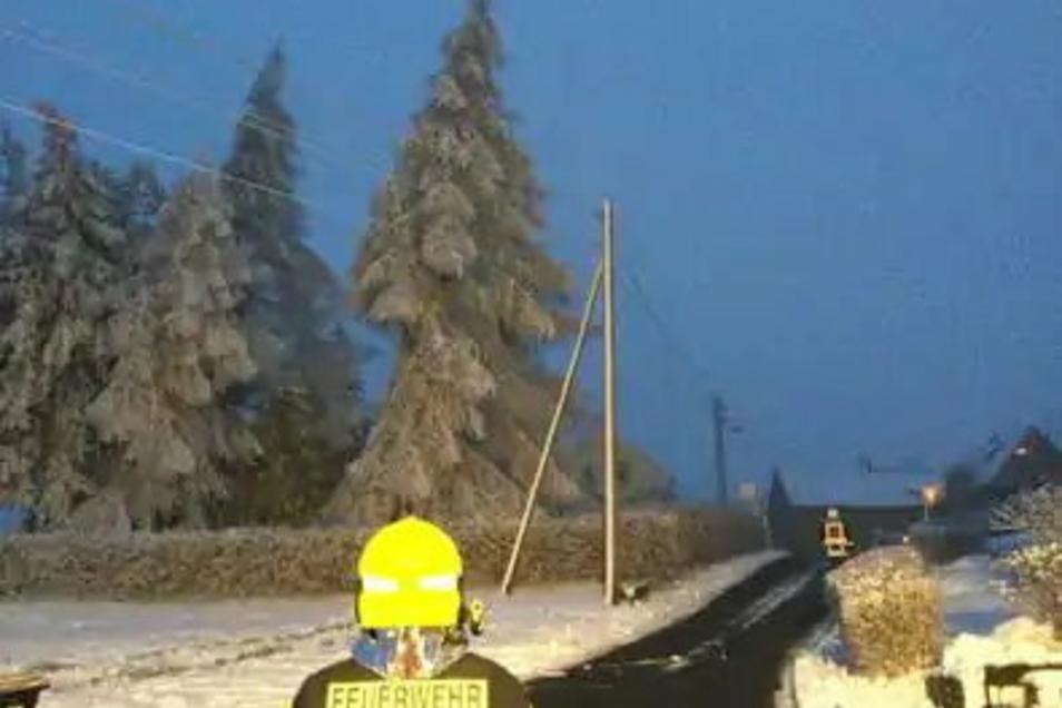 In Ohorn musste die Feuerwehr am Dienstagnachmittag einen Baum fällen, der in eine Stromleitung zu stürzen drohte.