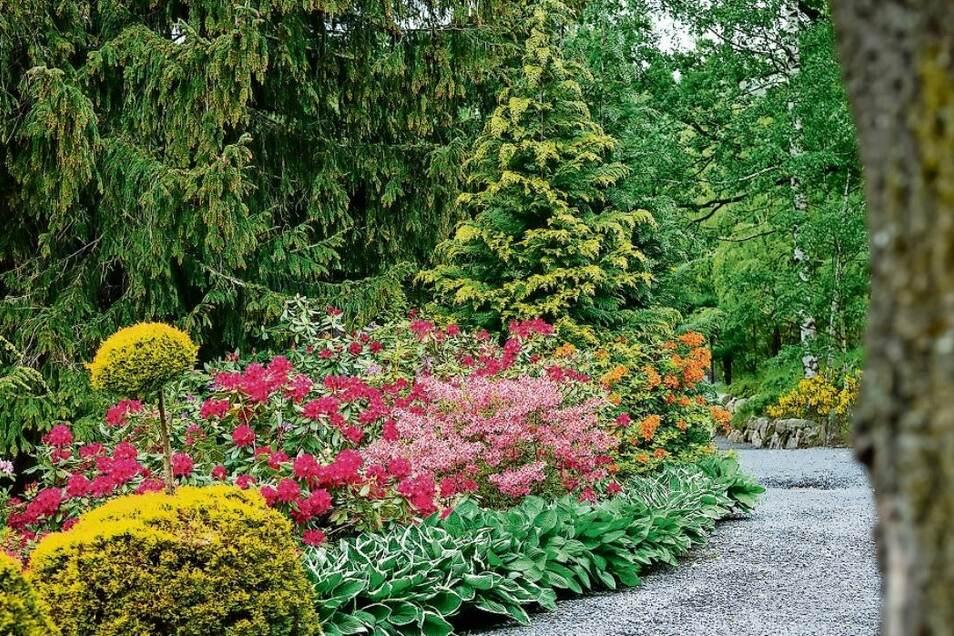 So bunt ist der Japanische Garten im Mai und Juni. Im Hochsommer dominiert Grün, es gibt aber auch buntes Laub.