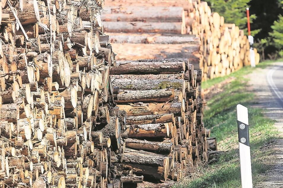 Auch bei Ammelsdorf wurde viel Schadholz aus dem Wald geholt.