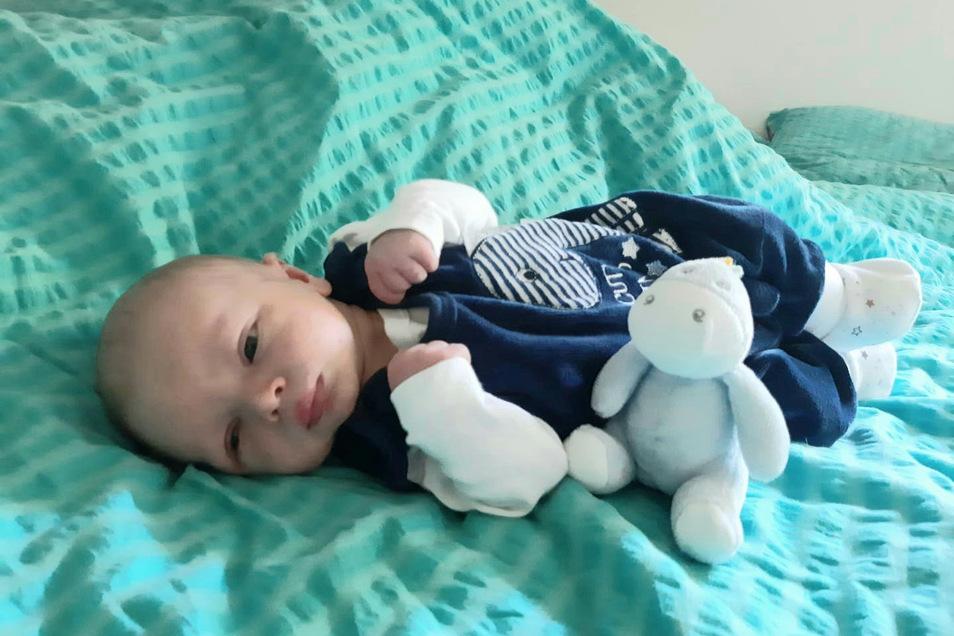 Willi Hugo, geboren am6. Mai, Geburtsort: Pirna, Gewicht: 3.340 Gramm, Größe: 48 Zentimeter, Eltern: Nancy und Kai Hartmann, Wohnort: Hohnstein