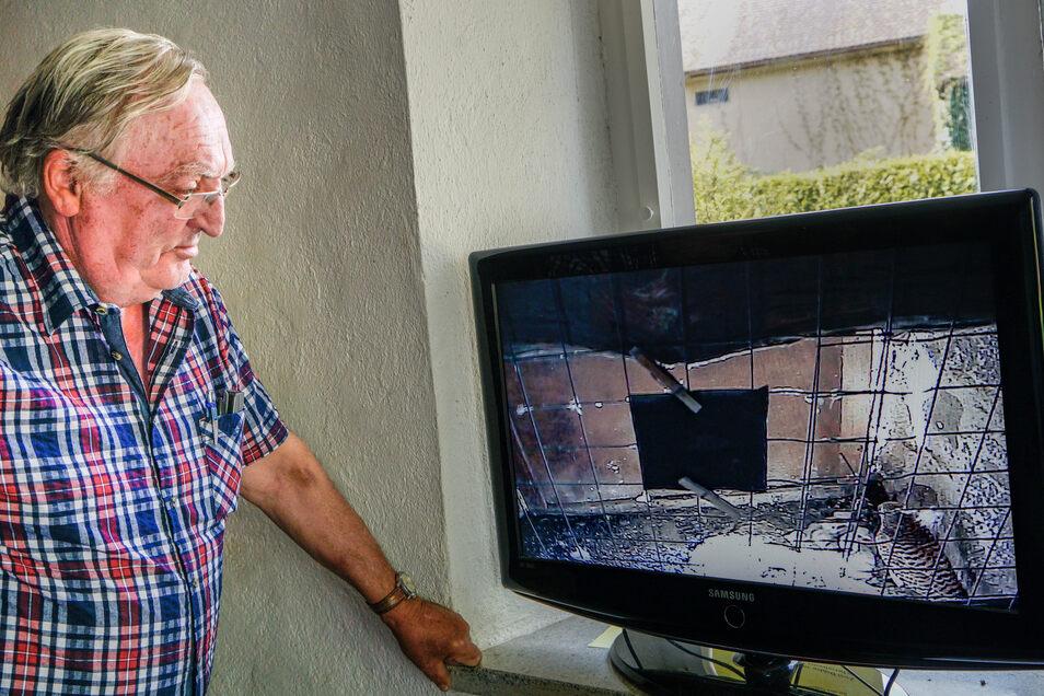 Matthias Kühnel schaut auf den Bildschirm im Putzkauer Kirchturm, auf den die Bilder aus dem Gelege der Turmfalken übertragen werden.