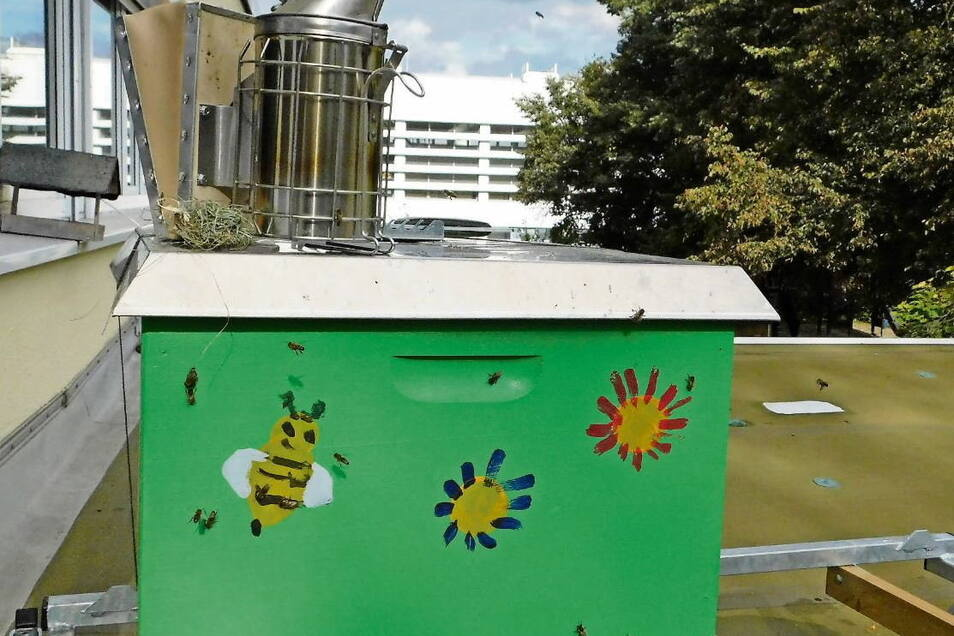 Das selbst bemalte Bienenhaus steht auf dem Dach der Kita. Es ist ein idealer Start- und Landeplatz, und Königin samt Volk nahmen das Haus gleich an.