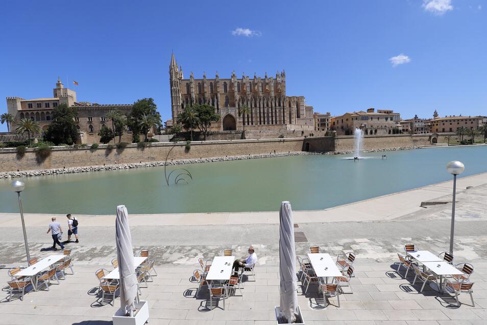 Ein Mann sitzt im Außenbereich einer Bar im Parc de la Mar. Im Hintergrund ist die Kathedrale von Palma zu sehen. Wer in Spanien Urlaub machen will, muss sich weiter gedulden.