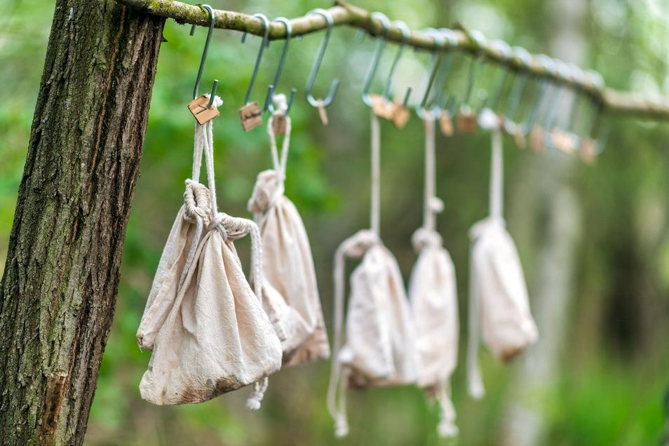 Wartezimmer für Vögel: Die fliegenden Sänger kommen nach ihrem Fang kurz in einen Baumwollbeutel, bevor sie vermessen und gewogen werden.
