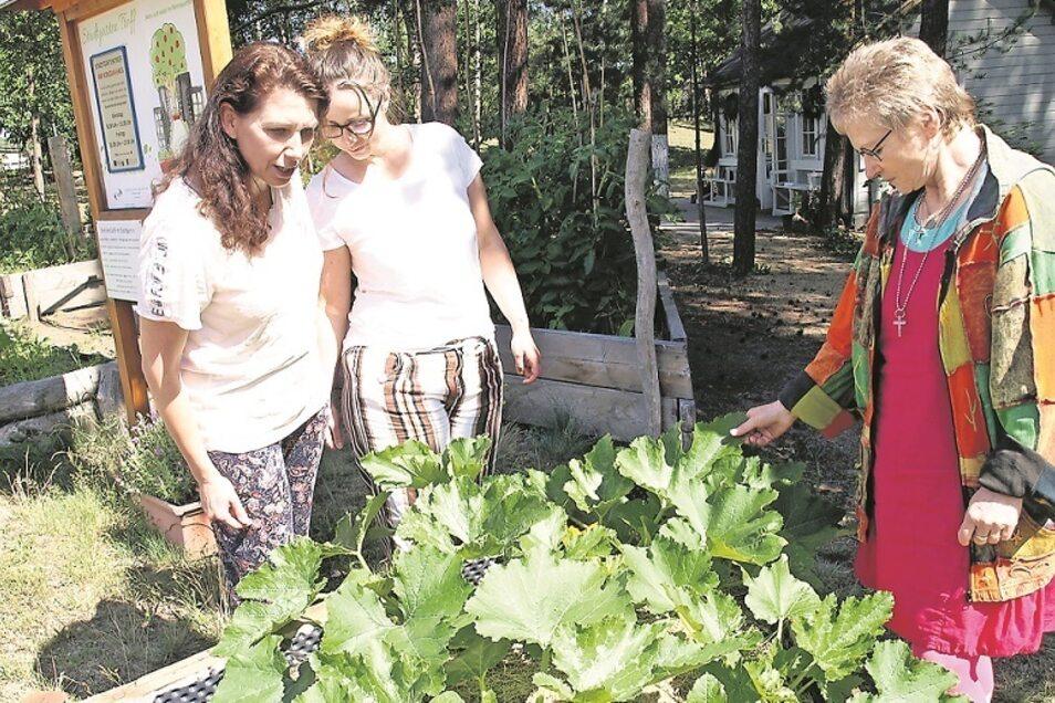 Der Stadtgarten ist offen für jedermann, egal ob man ihn, so wie hier Diana Hanso (li) und Franziska Reichelt (mi.) nur besichtigen, mithelfen oder im Garten-Café ausruhen und einen Plausch bei einem Getränk machen möchte. Andrea Erwerth (re.) ist ehrenam