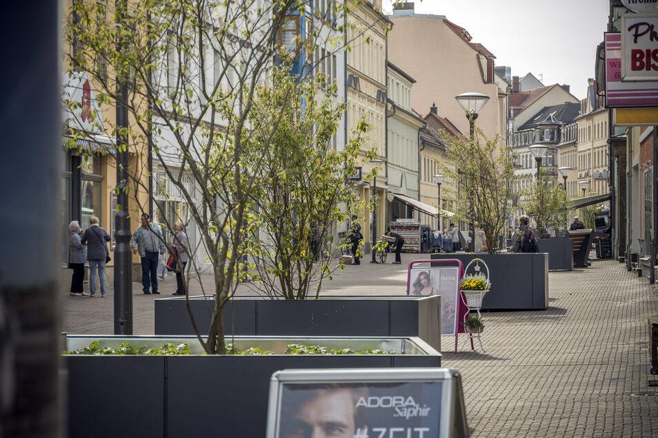 Die einen finden sie chic, die anderen schrecklich: Die neuen Pflanztröge auf der Hauptstraße im Abschnitt zwischen Pausitzer- und Scheiderstraße.