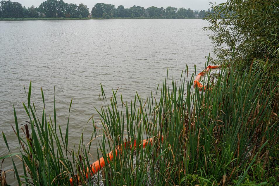 Im Niederteich liegt auch vier Wochen nach dem Busbrand noch eine Ölsperre im Wasser.