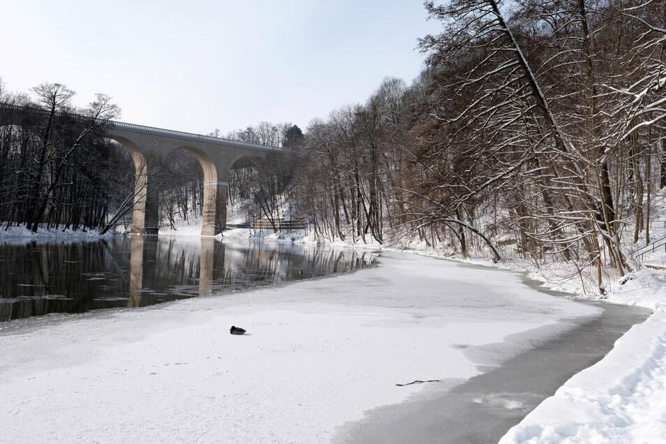 Am Görlitzer Neißeviadukt ist der Grenzfluss mittlerweile teilweise zugefroren.