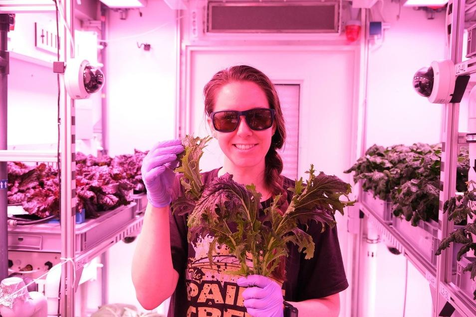 Jess Bunchek von der Nasa ist bis zum nächsten Frühjahr in der Antarktisstation. Sie züchtet im Gewächshaus des Deutschen Zentrums für Luft- und Raumfahrt Weltraumgemüse.