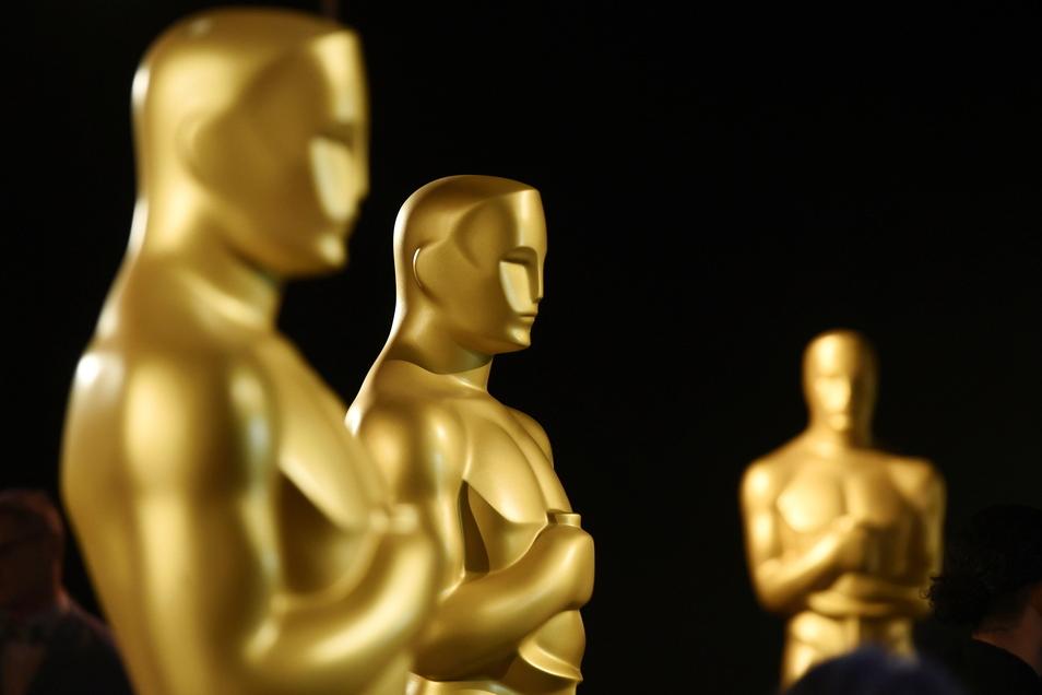 Wegen der Corona-Pandemie war die Oscar-Verleihung vom üblichen Termin im Februar auf Ende April verschoben worden.
