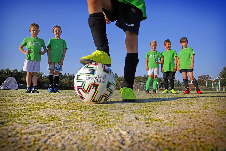 Sie warten auf den neuen Kunstrasenplatz: Lennox, Finn, Amy, Colin und Sophia (v. l.) von der F-Jugend des SV Grün-Weiß Elstra.