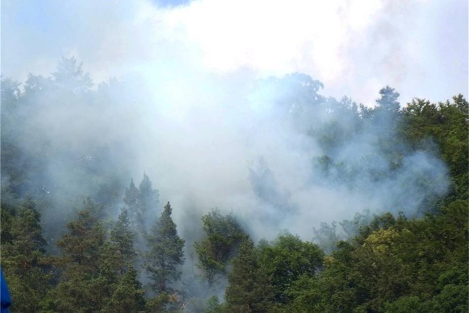 Seit etwa 14 Uhr steigt Qualm oberhalb der Felsenburg Altrathen auf-