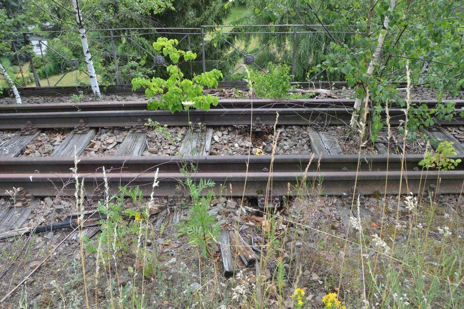 An der Stelle auf der stillgelegten Bahnstrecke haben Unbekannte ein Lagerfeuer gemacht.
