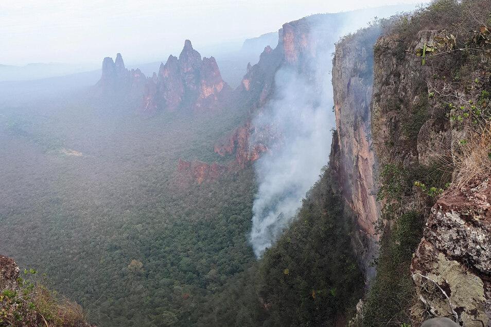 Seit Wochen wüten Tausende Feuer im Amazonasgebiet und den angrenzenden Steppengebieten.