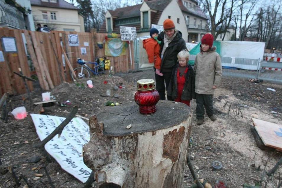 Baum-Protest im Januar 2008  Die Rotbuche wurde zum Symbol für den friedlichen Protest vieler Dresdner gegen die nach ihrer Ansicht überdimensionierte Planung der Elbquerung.