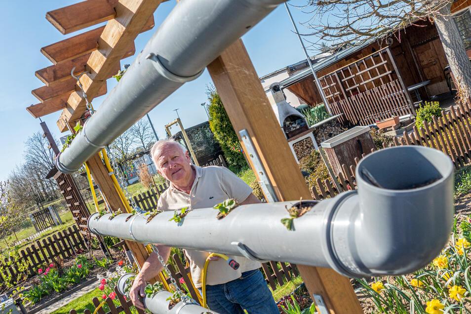 Dieter Hunger aus Leisnig hat sich ein Hochbeet aus Regenrinnen gebaut und gleich mit einer Bewässerung versehen. Ihren Garten hat die Familie nach einem Brand 2018 nicht aufgegeben.