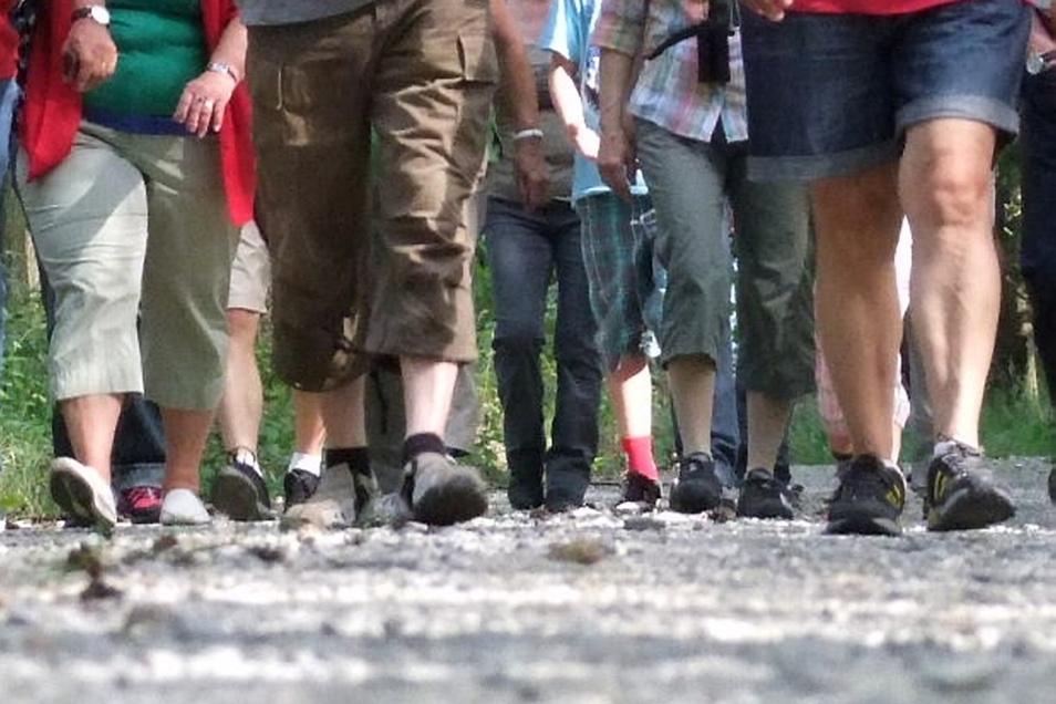 Zahlreiche Wanderfreunde können sich beim 24. Hoyerswerdaer Wandertag auf  sechs  verschiedene Strecken begeben.