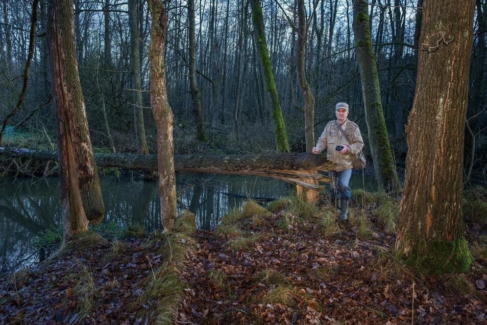 """Im November 2017 Siegfried Reimer einen Fotografen mit zu """"seinem"""" Biber-Revier am Zweiniger Grund mitgenommen. Seit 1988 hat Reimer die Ausbreitung der Tiere im Altkreis mit verfolgt und dokumentiert."""