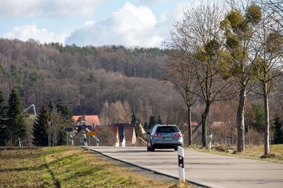 An der Bonnewitzer Straße, die Graupa mit Bonnewitz verbindet, gibt es keinen Geh-/Radweg. Das finden die Anwohner gefährlich.