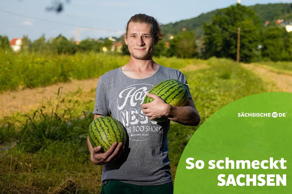 Die Renner im Hofladen von Florian Lassig: Melonen. Die rot- und gelbfleischigen Sorten sind dieses Jahr besonders gut gewachsen und schmecken herrlich süß.