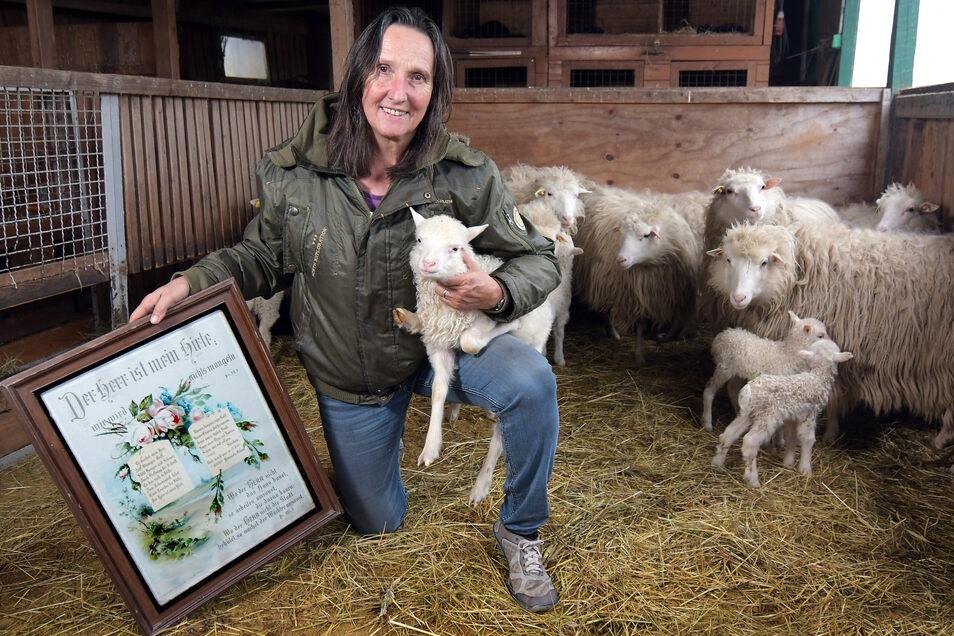 Elsbeth Pohl-Roux vom Archehof in Klosterbuch hält eines der neugeborenen Lämmchen. In den vergangenen Tagen sind 21 Lämmer auf die Welt gekommen.