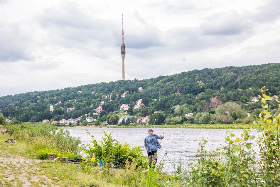 Noch prägen Wolken das Bild in Dresden. Auch die Elbe ist gestiegen. Doch in der kommenden Woche werden kaum noch Wolken zu sehen sein. Die Temperaturen steigen kräftig an.