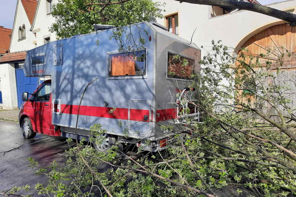 Im alten Ortskern von Naundorf stürzte ein Baum vom Grundstück auf die Straße, direkt neben einem geparkten Wohnmobil.