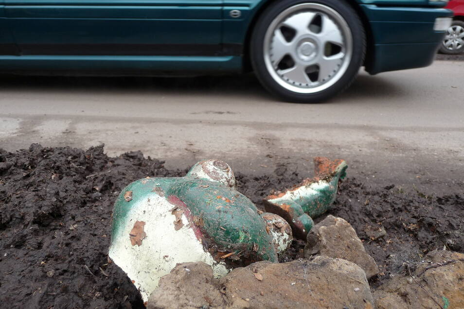 Flutopfer: Dieser Postelwitzer Gartenfrosch hat den Sturzregen nicht überlebt.