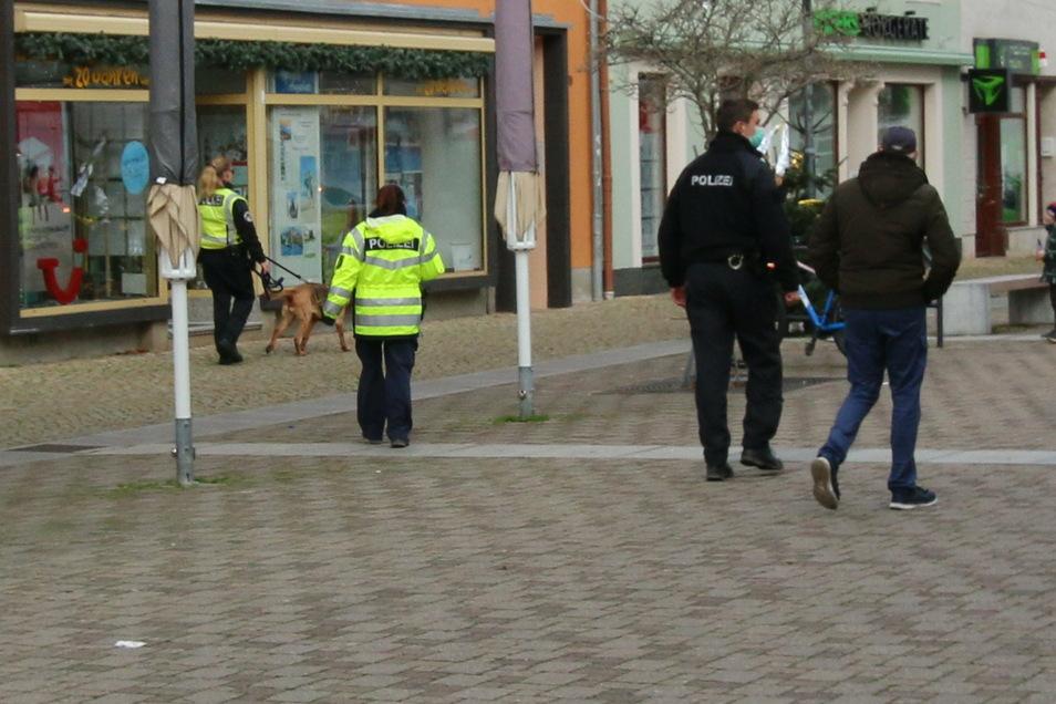In mehreren Gruppen waren Polizeibeamte mit Hunden in der Döbelner Innenstadt unterwegs.