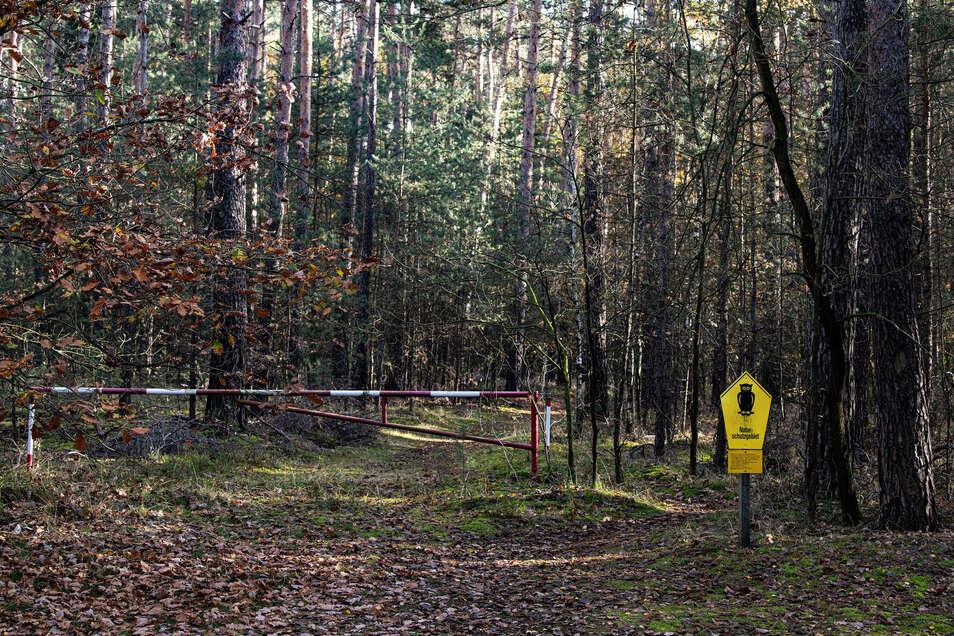 """Der Zugang zum Naturschutzgebiet """"Waldmoore bei Großdittmansdorf"""" ist nur auf Waldwegen möglich."""