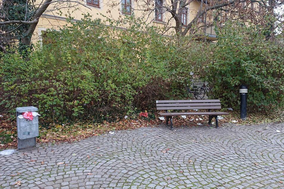 Auch in der Grünanlage am Vier-Tore-Brunnen sind die Mülleimer übervoll und liegt Papier umher.
