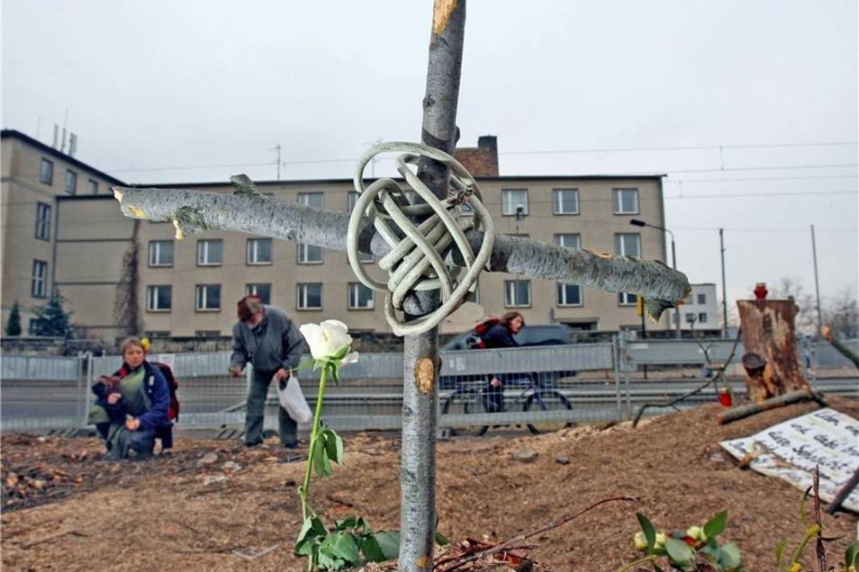 Baum-Protest im Januar 2008  Einen Tag nach der Fällung erinnern nur noch ein schlichtes Holzkreuz und Späne an die Rotbuche.
