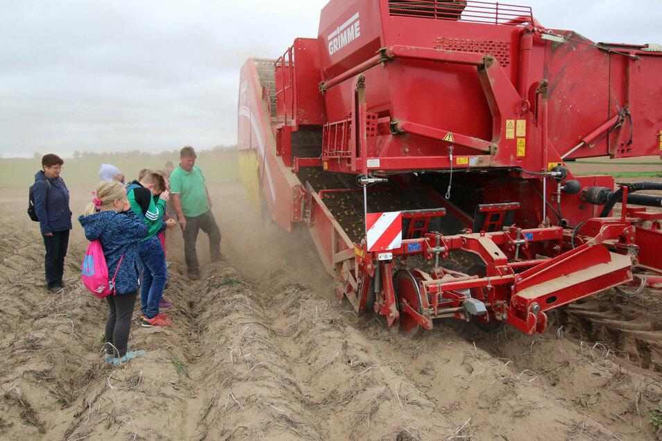 Bei trockenem Wetter ist die Kartoffelernte eine staubige Angelegenheit. Warum das so ist, erklärt der Chef des Landhofes der Agrar AG Ostrau den Drittklässlern.
