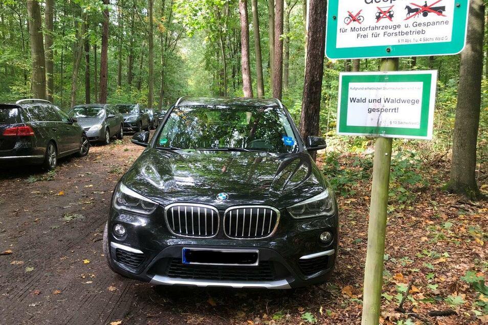 Kaum hat die Pilzsaison begonnen, werden in Dresden Waldwege zugeparkt. Der Sachsenforst bittet Sammler um mehr Rücksicht.