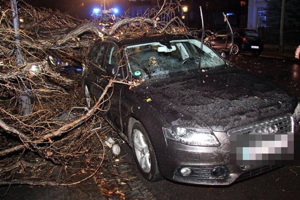 Sachsen / Dresden: Am 05.12.2013 ließ der Sturm gegen 23.30 Uhr einen Baum auf der Kronenstraße umkippen. Die Pappel fiel genau auf einen abgeparkten PKW VW Passat. Der Wagen wurde unter der Last des Baumes zerdrückt. Der Besitzer hatte sein Auto gerade erst abgestellt. Die Berufsfeuerwehr (Wache Übigau) beseitigte mit Motorsägen den Baum. Zwischenzeitlich mußten die Aufräumarbeiten unterbrochen werden, da ein Techniker eine Gaslaterne demontieren mußte. Nur so konnte die Feuerwehr den Baumstamm auf den Fußweg legen.