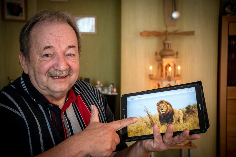 Statt echte Löwen in Südafrika kann sich Winfried Renger die Raubkatzen nur im Internet ansehen. Zwei Versuche, in das ferne Land zu kommen, sind fehlgeschlagen.