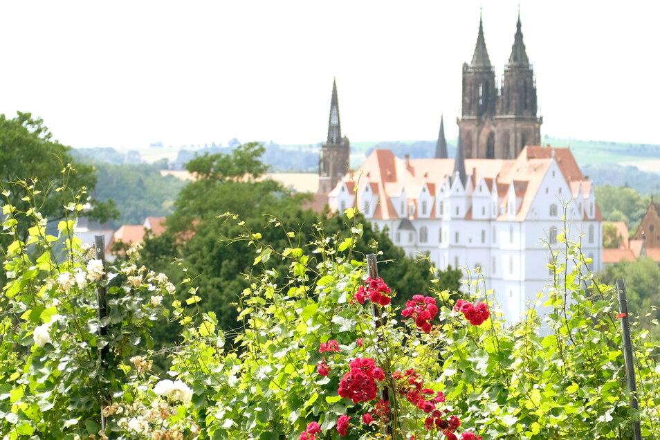 Sommerlicher Blick auf Albrechtsburg und Dom: Die Stadt Meißen hat jetzt keinen aktuellen Corona-Fall mehr. In Riesa sind es noch vier, in Großenhain drei und in Radebeul einer. Die Inzidenz im gesamten Landkreis liegt auf sehr tiefem Niveau.