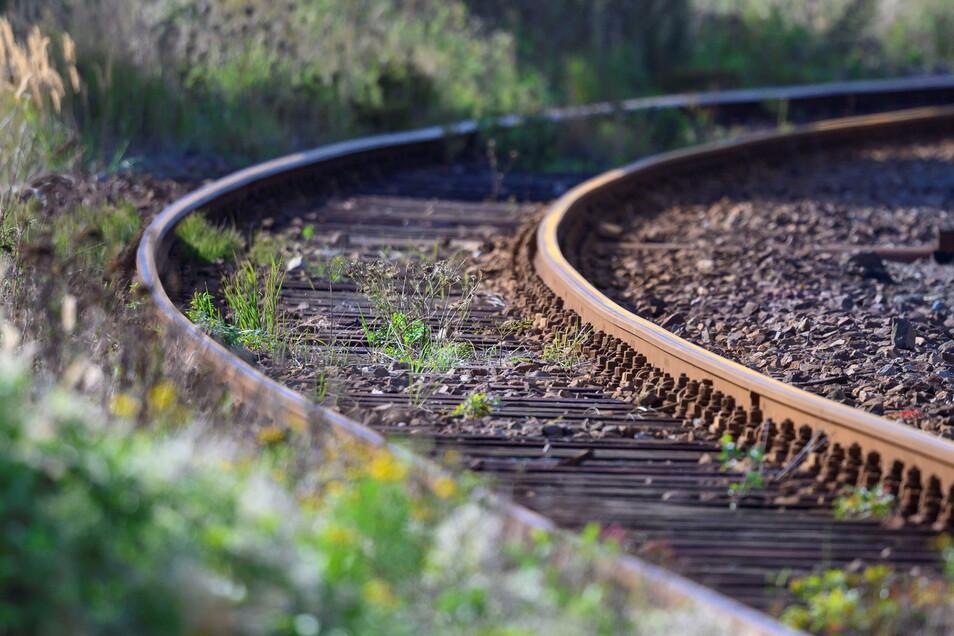 Für das Gutachten wurden 22 Bahnstrecken unter die Lupe genommen, die in den vergangenen Jahrzehnten stillgelegt worden sind.