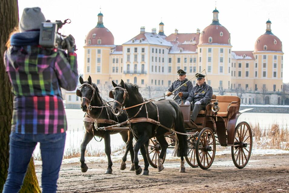 Die Schweren Warmblüter Cadett und Unicum zeigen sich vor der Kulisse von Schloss Moritzburg von ihrer besten Seite.