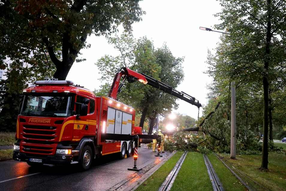 Mit schwerem Gerät musste die Feuerwehr anrücken, um den Baum zu beseitigen.