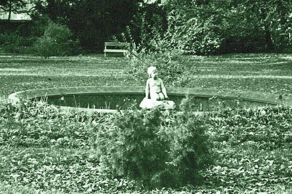 Zum Park gehörte einst auch dieses Wasserbecken mit der in den 1990er-Jahren spurlos verschwundenen Putte. Vor diese Figur gab es an gleicher Stelle eine Fontäne.