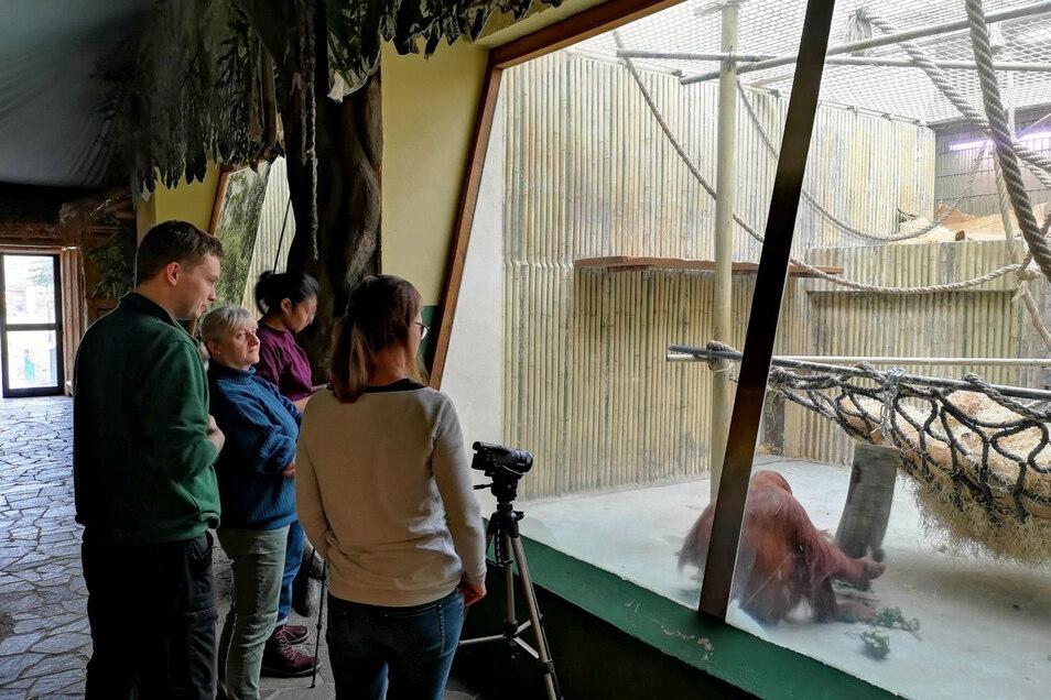 Die Forscherinnen der Universität Leipzig nahmen die Studien per Kamera auf.
